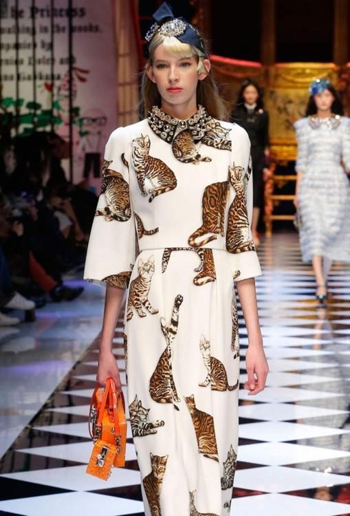 Показ Dolce&Gabbana осень-зима 2016