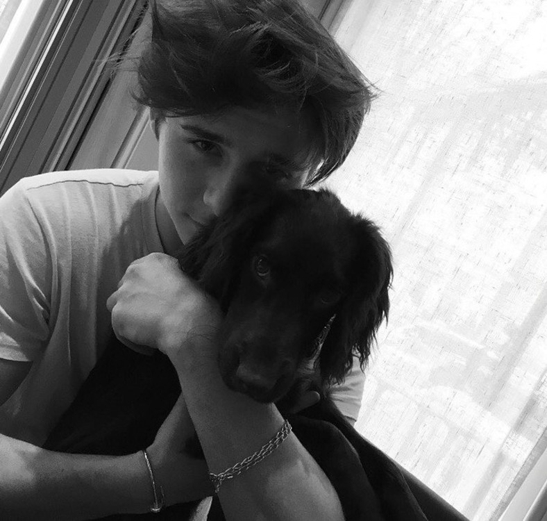 Бруклин Бекхэм и его собака Олив
