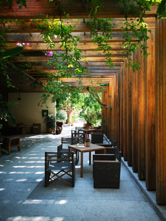 Ресепшн, спа-павільйони і фітнес-центр готелю розміщені на відкритому повітрі просто в саду