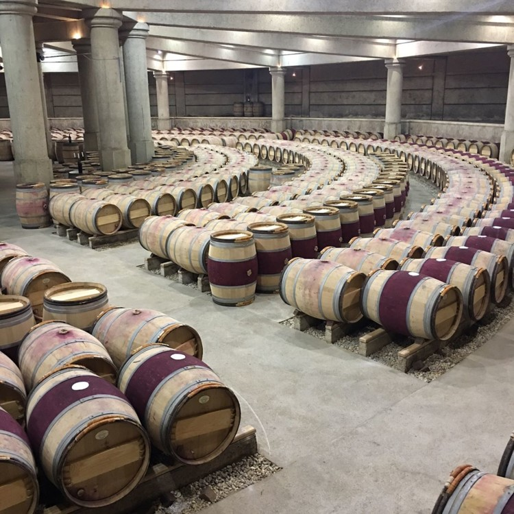 Винодельческое хозяйство Château Lafite Rothschild @bellawinetours