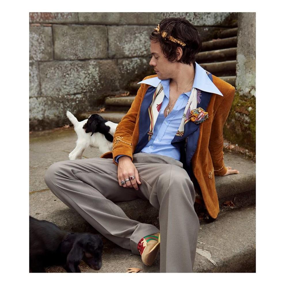 Гарри Стайлс и поросята в новой рекламной кампании Gucci   Vogue Ukraine 4f2e883e963