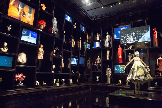 Cabinet of Curiosities Room